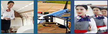航空服务专业实训软件